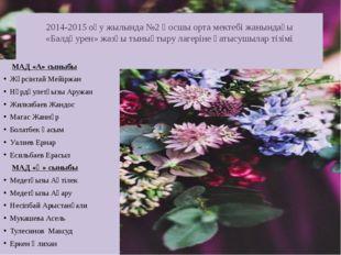 2014-2015 оқу жылында №2 Қосшы орта мектебі жанындағы «Балдәурен» жазғы тынық