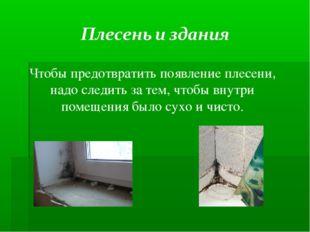 Чтобы предотвратить появление плесени, надо следить за тем, чтобы внутри поме