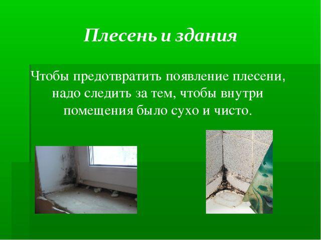 Чтобы предотвратить появление плесени, надо следить за тем, чтобы внутри поме...