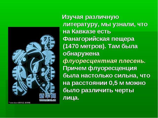 Изучая различную литературу, мы узнали, что на Кавказе есть Фанагорийская пе...