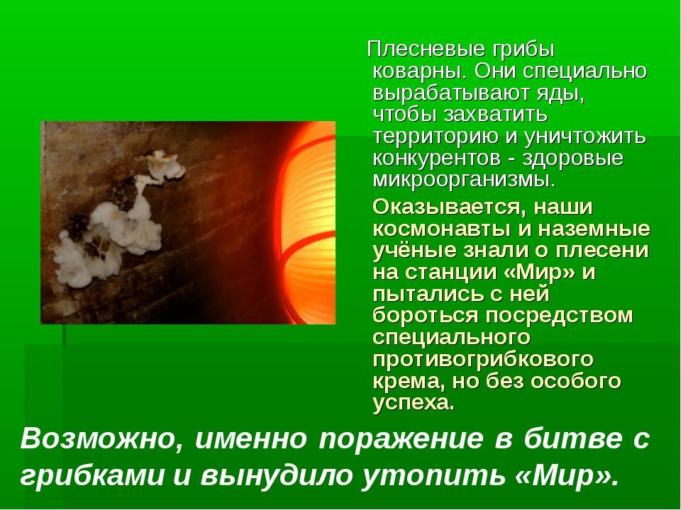 Плесневые грибы коварны. Они специально вырабатывают яды, чтобы захватить те...