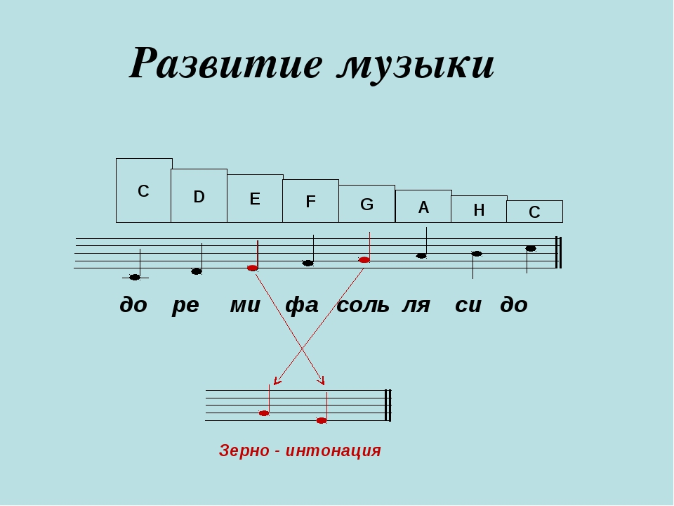 Развитие музыки до ре ми фа соль ля си до Зерно - интонация