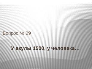 У акулы 1500, у человека… Вопрос № 29