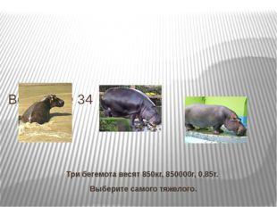 Три бегемота весят 850кг, 850000г, 0,85т. Выберите самого тяжелого. Вопрос № 34