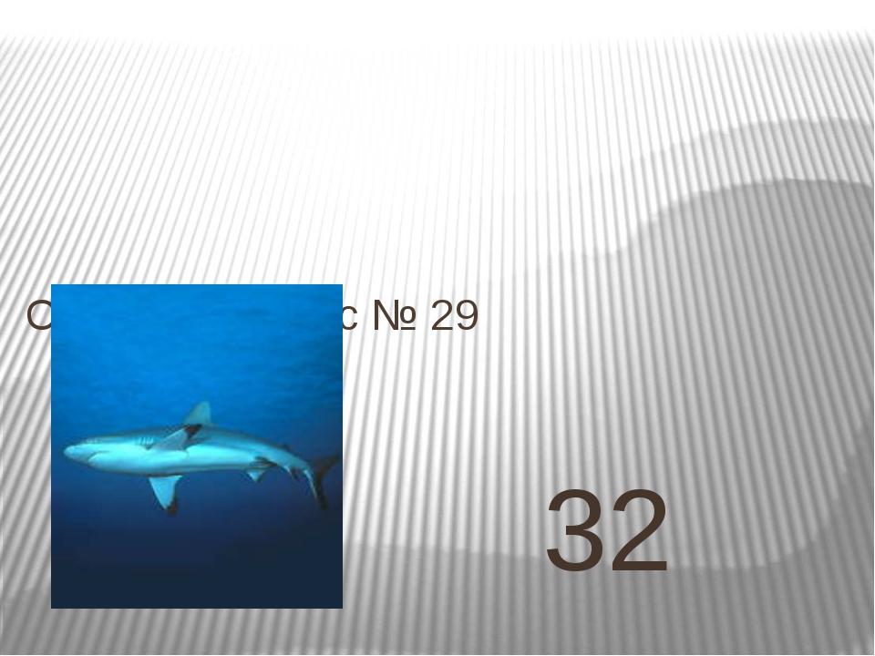 32 Ответ на вопрос № 29