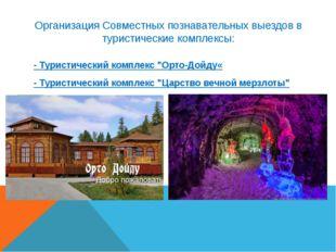 Организация Совместных познавательных выездов в туристические комплексы: - Ту