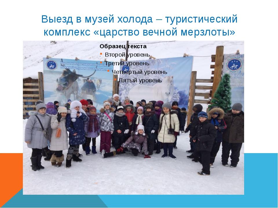 Выезд в музей холода – туристический комплекс «царство вечной мерзлоты»
