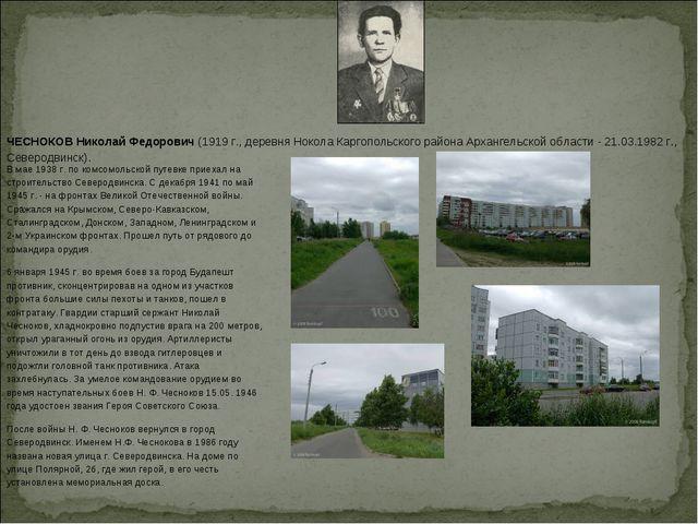 ЧЕСНОКОВ Николай Федорович(1919 г., деревня Нокола Каргопольского района Арх...