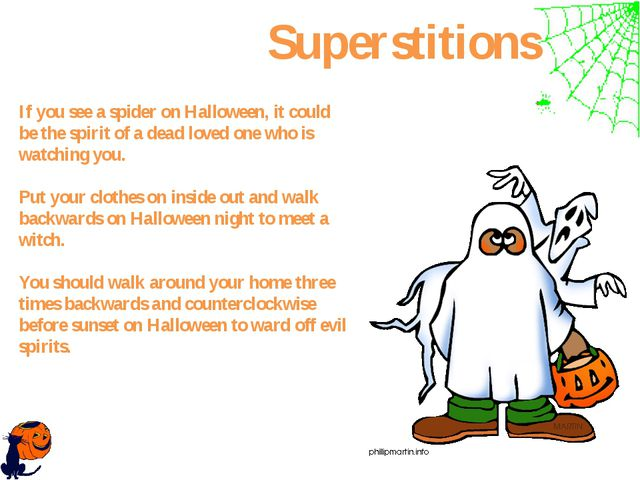If you see a spider on Halloween, it could be the spirit of a dead loved one...