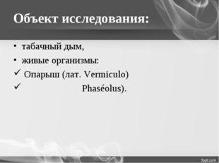 Объект исследования: табачный дым, живые организмы: Опарыш (лат. Vermiculo) Ф