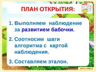 Урок 9, слайд 12 Выполняем наблюдение за развитием бабочки. Соотносим шаги ал