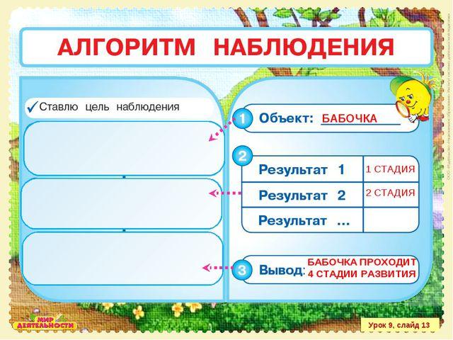 Урок 9, слайд 13 БАБОЧКА 1 СТАДИЯ 2 СТАДИЯ БАБОЧКА ПРОХОДИТ 4 СТАДИИ РАЗВИТИЯ