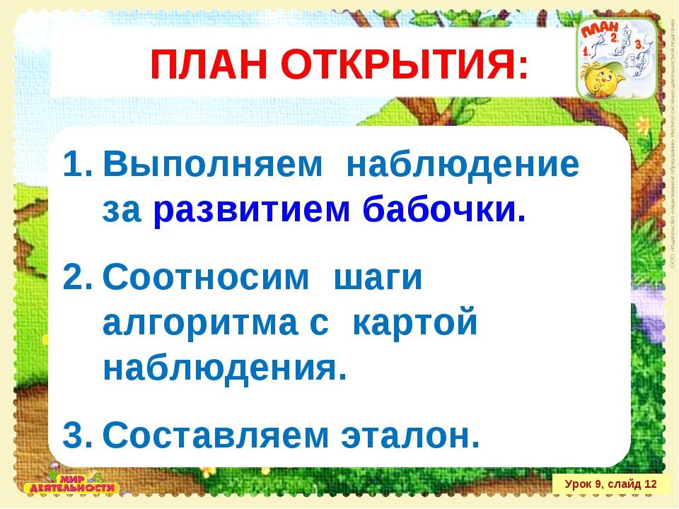 Урок 9, слайд 12 Выполняем наблюдение за развитием бабочки. Соотносим шаги ал...