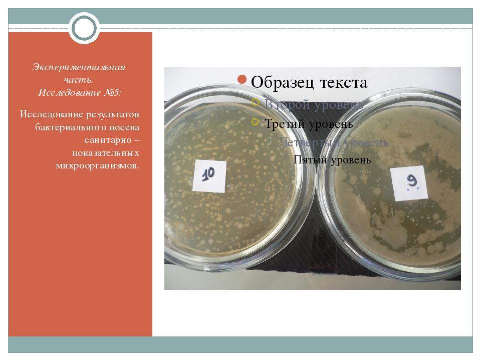 Экспериментальная часть. Исследование №5: Исследование результатов бактериаль...
