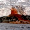 Какие существа виновны в цвете Кровавого водопада в Антарктиде?