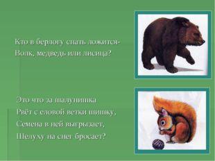 Кто в берлогу спать ложится- Волк, медведь или лисица? Это что за шалунишка Р