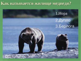 Как называется жилище медведя? 1.Нора 2.Дупло 3.Берлога