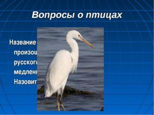 Вопросы о птицах Название этой птицы произошло от древнего русского глагола «