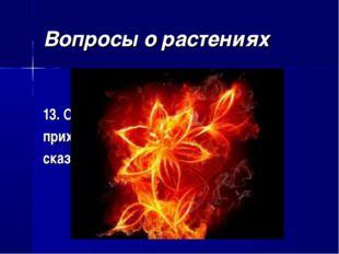 Вопросы о растениях 13. От какого «красного цветка» приходил в ужас тигр Шерх