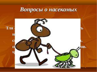 Вопросы о насекомых Тля – это насекомое-вредитель. Но есть насекомые, которые