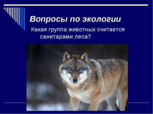 Вопросы по экологии Какая группа животных считается санитарами леса? Растител