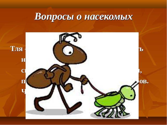 Вопросы о насекомых Тля – это насекомое-вредитель. Но есть насекомые, которые...