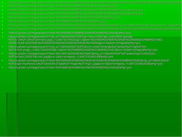https://yandex.ru/images/search?text=%D1%81%D0%BE%D0%B1%D0%B0%D0%BA%D0%B0%20%...