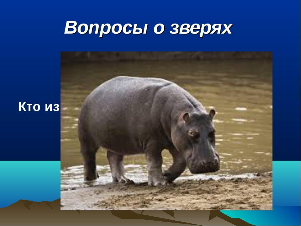 Вопросы о зверях Кто из зверей самый толстокожий?