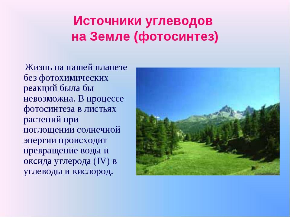 Источники углеводов на Земле (фотосинтез) Жизнь на нашей планете без фотохими...