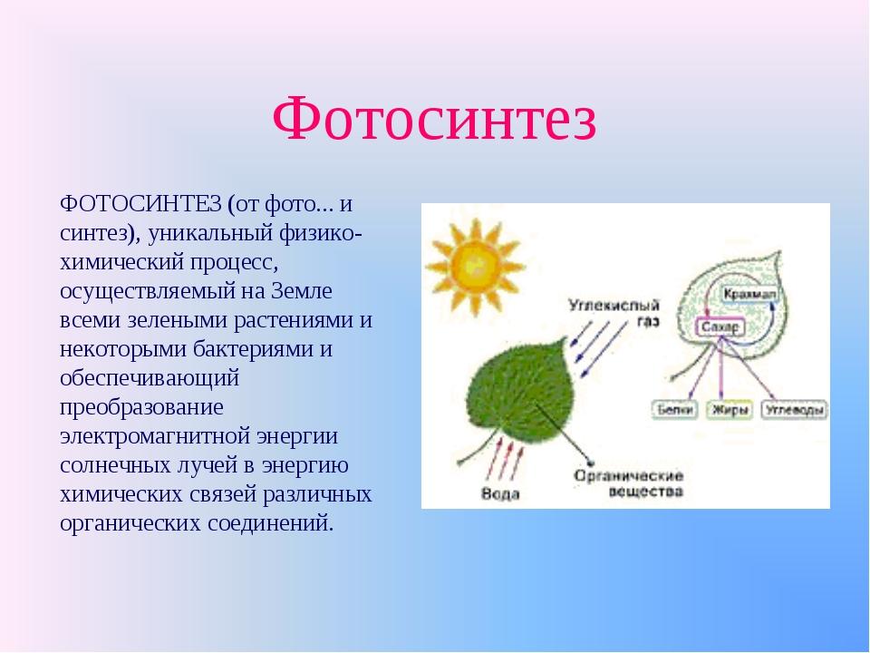 Фотосинтез ФОТОСИНТЕЗ (от фото... и синтез), уникальный физико-химический про...