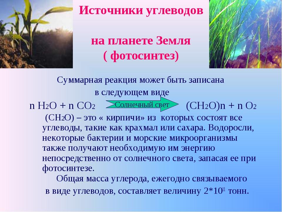 Источники углеводов на планете Земля ( фотосинтез) Суммарная реакция может бы...