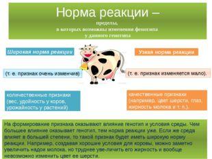 Широкая норма реакции Узкая норма реакции (т. е. признак очень изменчив) (т.