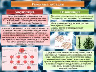 Геномные мутации Анеуплоидия Полиплоидия Утрата или добавление к гаплоидному