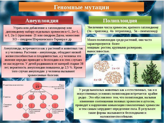 Геномные мутации Анеуплоидия Полиплоидия Утрата или добавление к гаплоидному...