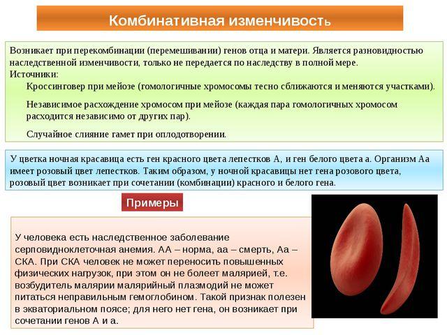 Комбинативная изменчивость У человека есть наследственное заболевание серпови...
