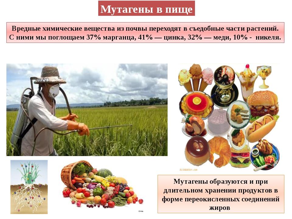 Мутагены в пище Вредные химические вещества из почвы переходят в съедобные ча...