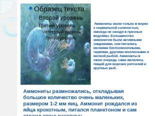 Аммониты жили только в морях с нормальной соленостью, никогда не заходя в пр