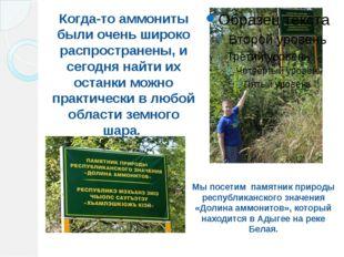 Мы посетим памятник природы республиканского значения «Долина аммонитов», кот
