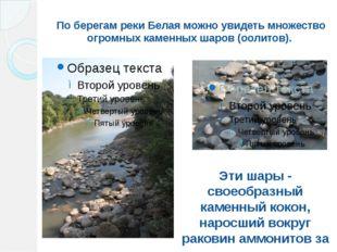 По берегам реки Белая можно увидеть множество огромных каменных шаров (оолито