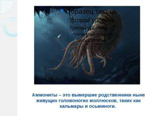 Аммониты – это вымершие родственники ныне живущих головоногих моллюсков, таки