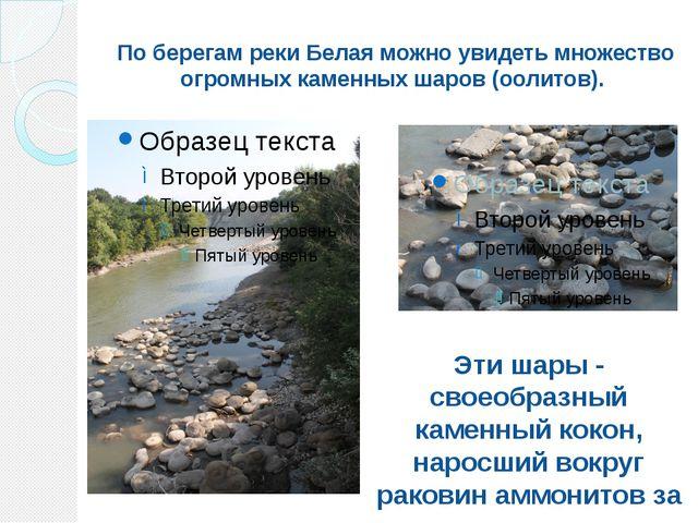 По берегам реки Белая можно увидеть множество огромных каменных шаров (оолито...