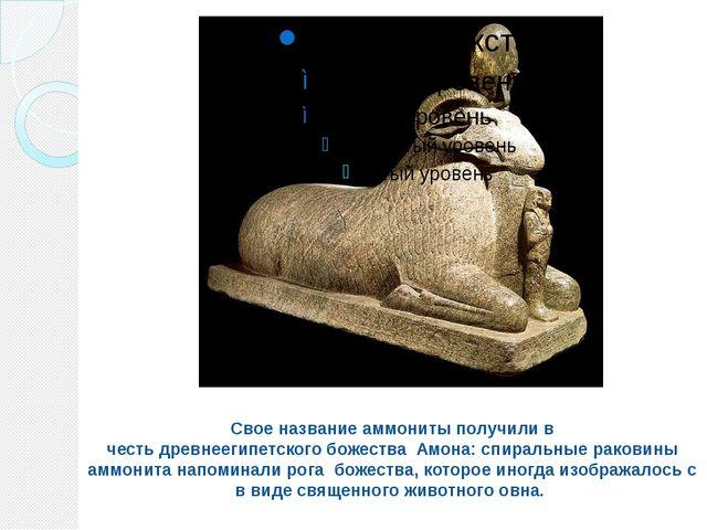 Свое название аммониты получили в честьдревнеегипетскогобожества Амона: сп...
