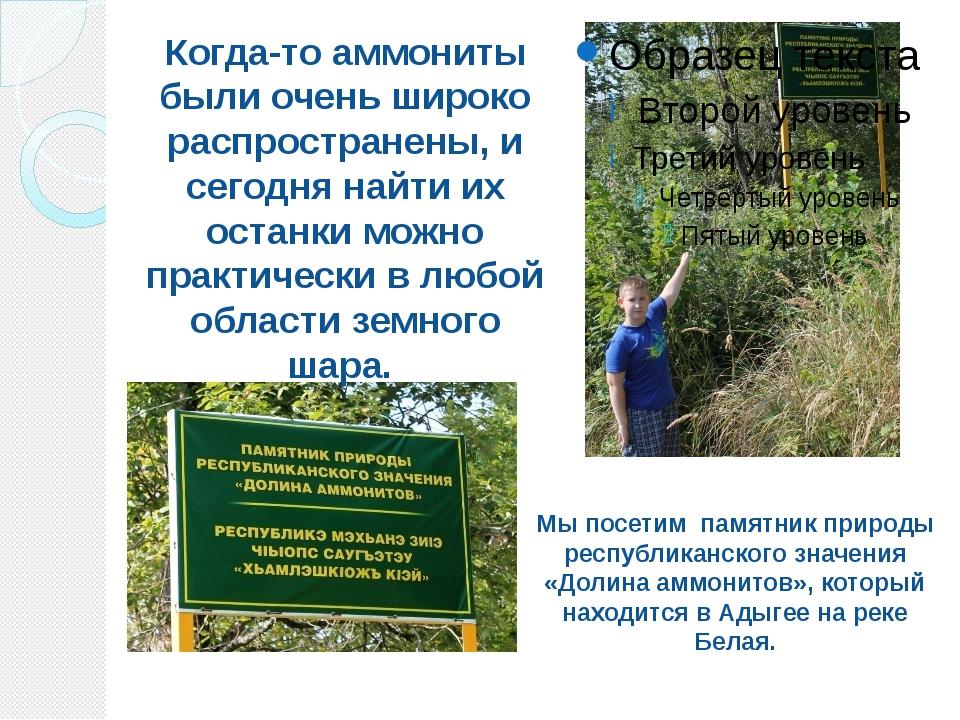 Мы посетим памятник природы республиканского значения «Долина аммонитов», кот...