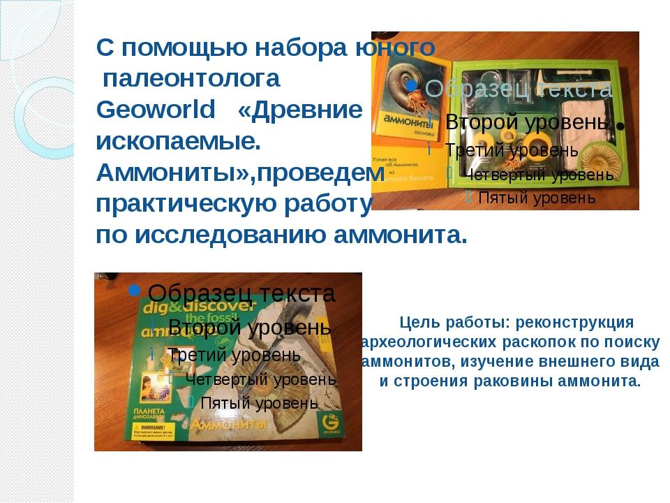 Цель работы: реконструкция археологических раскопок по поиску аммонитов, изу...
