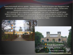 Перед мельницей жёлтое здание - Новые палаты - были построены при Фридрихе II