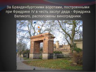 За Бранденбургскими воротами, построенными при Фридрихе IV в честь заслуг дед