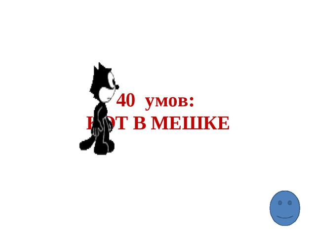 40 умов: КОТ В МЕШКЕ