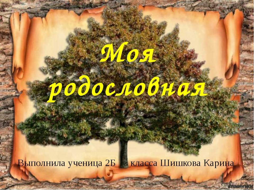 Моя родословная Выполнила ученица 2Б класса Шишкова Карина