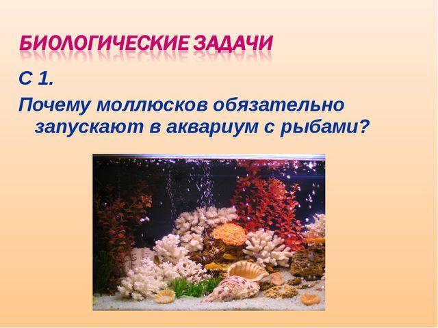 С 1. Почему моллюсков обязательно запускают в аквариум с рыбами?