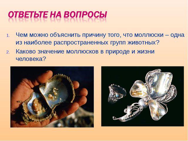 Чем можно объяснить причину того, что моллюски – одна из наиболее распростран...